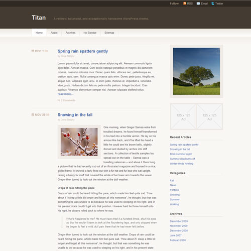 Titan тема WordPress