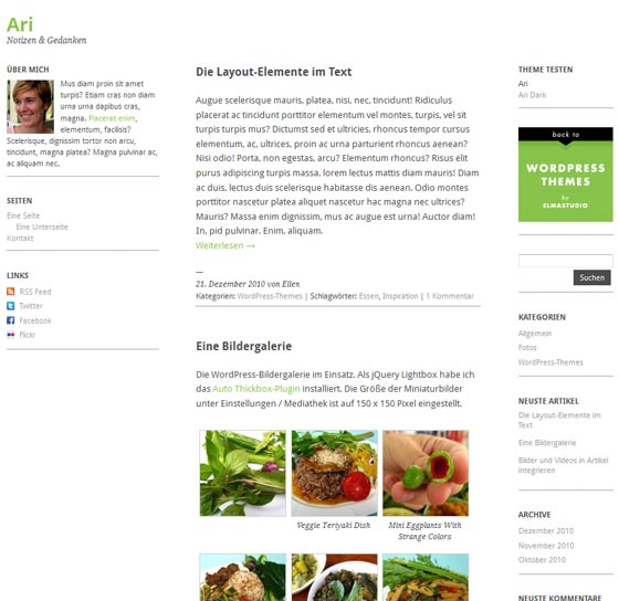 Ari тема WordPress