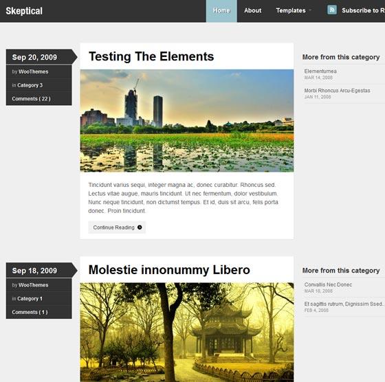 Skeptical тема WordPress