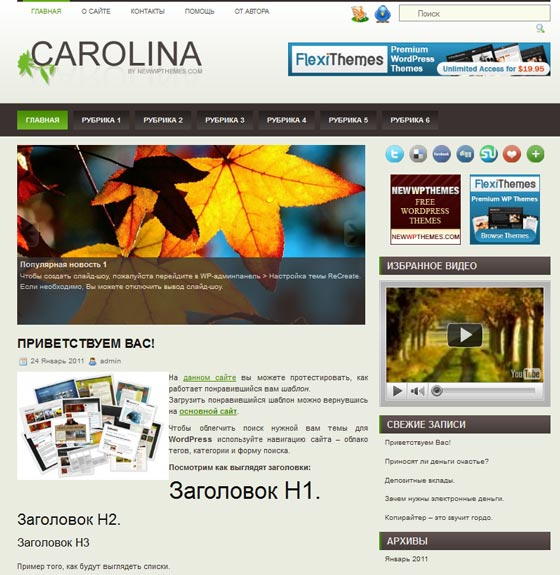 Carolina тема WordPress