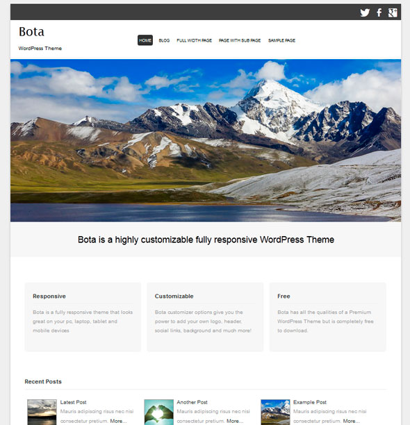 Bota тема WordPress