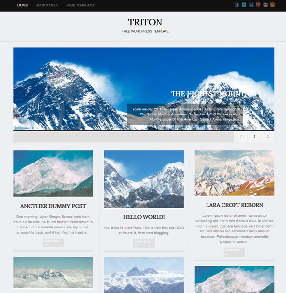 Triton Lite тема WordPress