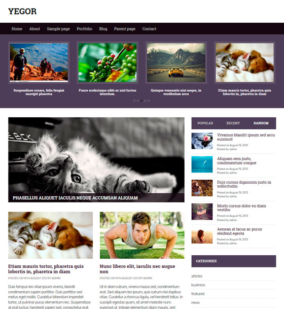 Yegor тема WordPress