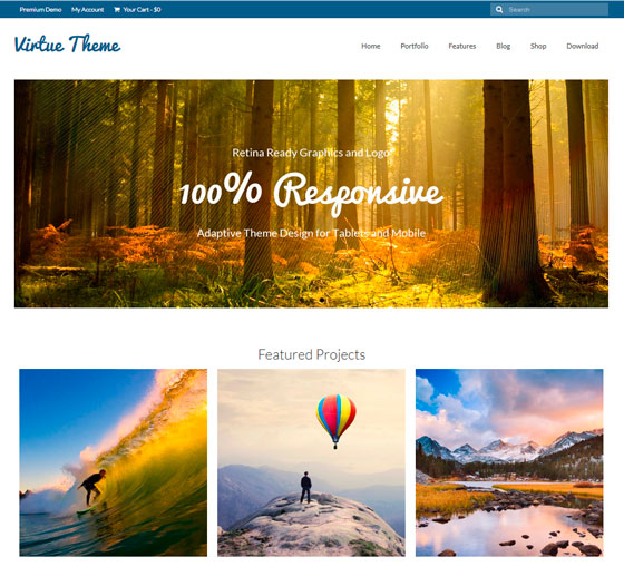 Virtue тема WordPress
